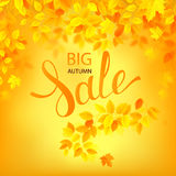 Vector Autumn sale poster. Illustration with season leaves Stock Images