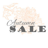 Vector Autumn sale template with chrysanthemum flower in pastel colors isolated  Stock Photos