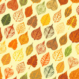 Vector autumn seamless leaves pattern. Stock Image