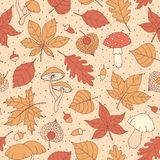Vector autumn seamless pattern with oak, poplar, beech, maple, aspen and horse chestnut leaves, mushrooms, acorns and physalis bro. Wn outline on the beige royalty free illustration