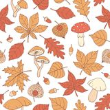 Vector autumn seamless pattern with oak, poplar, beech, maple, aspen and horse chestnut leaves, mushrooms, acorns and physalis. On the white background. Fall royalty free illustration