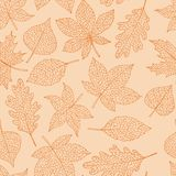 Vector autumn seamless pattern with oak, poplar, beech, maple, aspen and horse chestnut leaves orange outline. On the peach background. Fall line art of foliage stock illustration