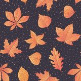 Vector autumn seamless pattern with oak, poplar, beech, maple, aspen and horse chestnut leaves and physalis of orange color. On the dark dotted background. Fall vector illustration