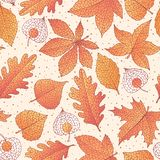 Vector autumn seamless pattern with oak, poplar, beech, maple, aspen and horse chestnut leaves and physalis. Of orange color on the beige dotted background stock illustration