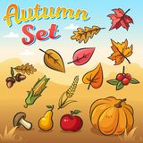 Vector autumn set with autumn leaves, vegetables and fruits royalty free illustration