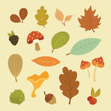 Vector autumn set of elements Stock Images