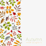 Vector autumn template. Modern stylized colorful leafs. Stock Photos