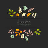 Vector autumn template. Modern stylized colorful leafs. Stock Photo