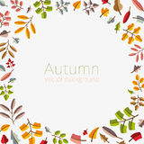 Vector autumn template. Modern stylized colorful leafs. Stock Images
