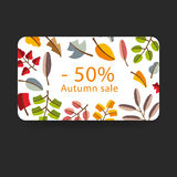 Vector autumn template. Modern stylized colorful leafs. Royalty Free Stock Image