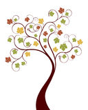 Vector autumn tree Stock Photography