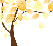 Vector autumn tree Royalty Free Stock Photography