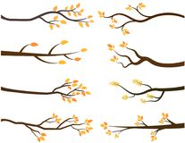 Vector autumn tree branch silhouettes. With yellow leaves in flat style Stock Photos