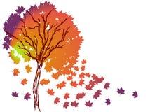 Vector autumn tree Stock Photo