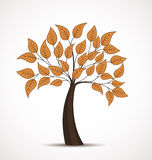 Vector autumn tree. On a white background Stock Photography