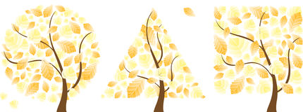 Vector autumn trees Stock Photos