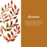 Vector autumn watercolor leaf pattern template Royalty Free Stock Image