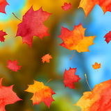 Vector autumn watercolor leaves on blurred Stock Photo