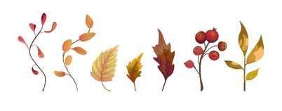 Vector autumn watercolor style hand drawn seasonal designer elem royalty free illustration