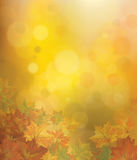Vector autumnal  background. Vector autumnal leaves on bokeh background Royalty Free Stock Image