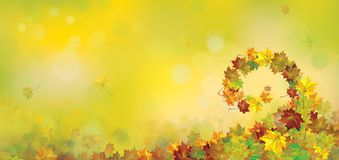 Vector autumnal  background. Vector autumnal  maple leaves   background Royalty Free Stock Images