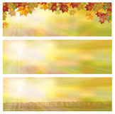 Vector autumnal banners. Royalty Free Stock Photos