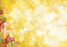 Vector autumnal leaves background. Vector autumnal leaves on bokeh background Stock Photo
