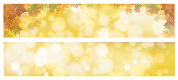 Vector autumnal leaves banners. Vector autumnal leaves on bokeh banners Royalty Free Stock Image