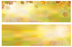 Vector autumnal leaves  banners. Vector autumnal leaves on bokeh banners Stock Photography