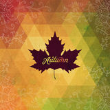 Vector autumnal maple leaf background made of triangles. Retro b Royalty Free Stock Photos