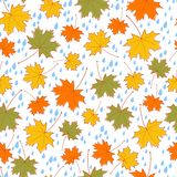 Vector autumnal seamless background Stock Image