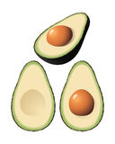 Vector Avocado. An isolated  avocado and halves Stock Images