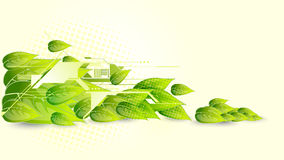 Vector background. Fresh green eps10 vector background Royalty Free Stock Image