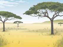 Vector background of the African savanna. Vector picture of nature of the African savanna stock illustration