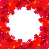 Vector background with autumn decor Royalty Free Stock Images