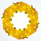 Vector background with autumn decor Stock Image