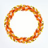 Vector background with autumn decor Royalty Free Stock Photos