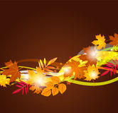 Vector background with autumn leaves Royalty Free Stock Photo