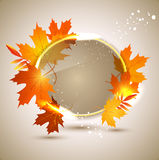 Vector  background with autumn leaves Stock Photo