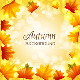 Vector background with autumn leaves. Abstract background with autumn leaves. Vector illustration. Cartoon style. Yellow and red leaves arranged the edges Royalty Free Stock Image