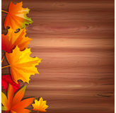 Vector background with autumn leaves. Abstract background with autumn leaves. Vector illustration. Cartoon style. Yellow and red leaves arranged on the left side Stock Image
