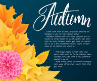 Vector background with autumn leaves, dahlia flowers and hand written lettering - autumn Stock Photos