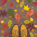 Vector background autumn leaves Royalty Free Stock Photography
