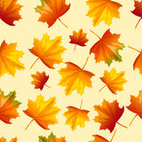 Vector background with autumn leaves. Seamless pattern with autumn leaves. Vector illustration. Cartoon style. Chaotically located yellow and red leaves on light Stock Photos