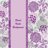 Vector background. With beautiful silhouettes of flowers and berries. Violet banner with place for your text Stock Photo