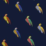 Vector background with birds Stock Image