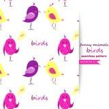 Vector background with birds. Stock Photos