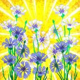Vector background with blue cornflowers Stock Photos