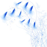 Vector background with blue flowers Royalty Free Stock Image