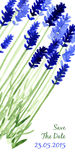 Vector background with blue watercolor lavender Royalty Free Stock Photography